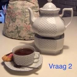 Dag 2457: Tea Topics Vraag 2
