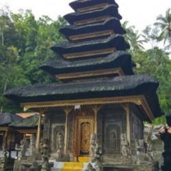 Dag 2663: Bali
