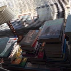 Lezen&Luisteren: Boekenkringloop (13)