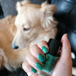 NOTD 12 november 2020: King of Greens (Catrice)