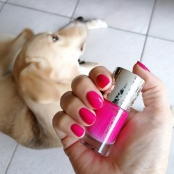 NOTD 19 november 2020: Welcome to Pink Tropez (Catrice)
