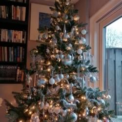 Dag 4041: Kerstboom