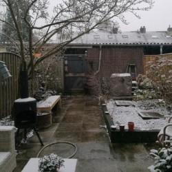 Dag 456: Sneeuw