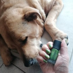 NOTD 7 april 2021: Green Hawaii (GOSH)