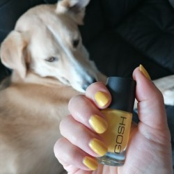 NOTD 9 april 2021: Yellow Bombay (GOSH)